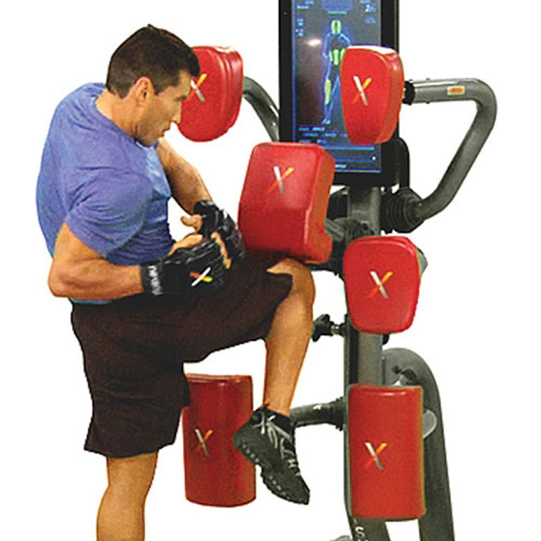 Mixed Martial Arts Games: Exergame Performance X Room